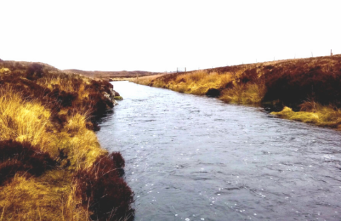 River Creed System